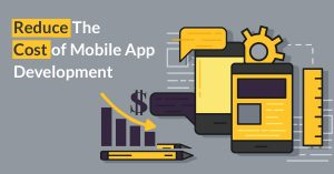 reduce the cost of mobile app development citrusleaf
